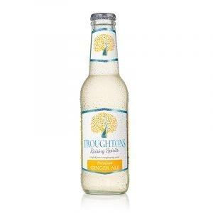 Troughtons Premium Ginger Ale 200ml